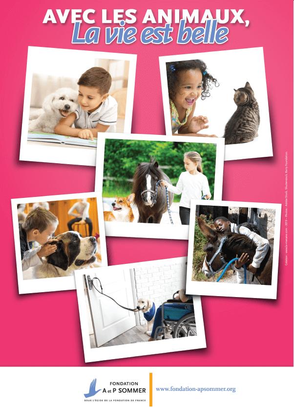 affiche - animaux émotions - La Manane, agence de communication pédagogique