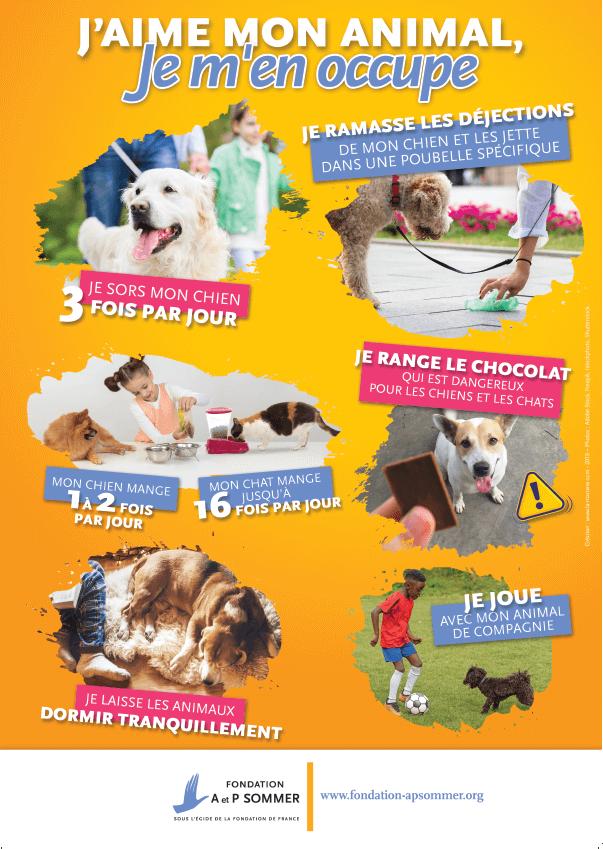 affiche - animaux responsabilité - La Manane, agence de communication pédagogique