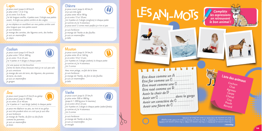 magazine- animots - La Manane, agence de communication pédagogique