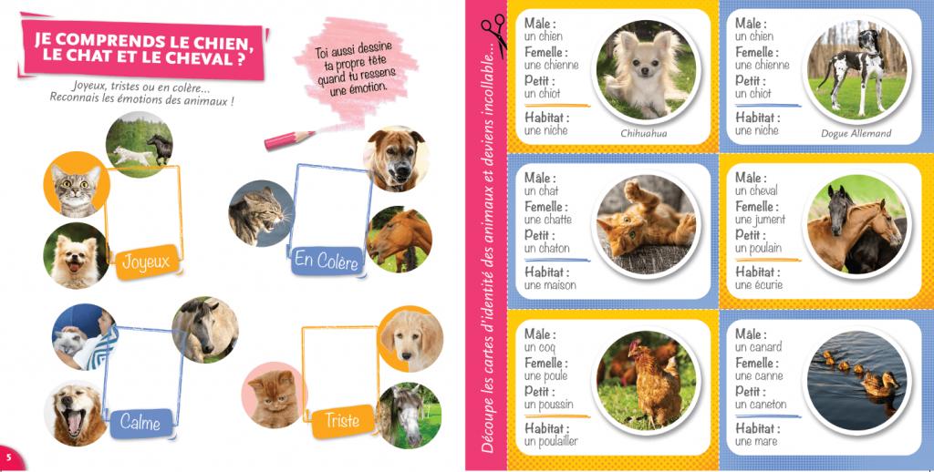 magazine- je comprends le chiens, le chat le cheval - La Manane, agence de communication pédagogique