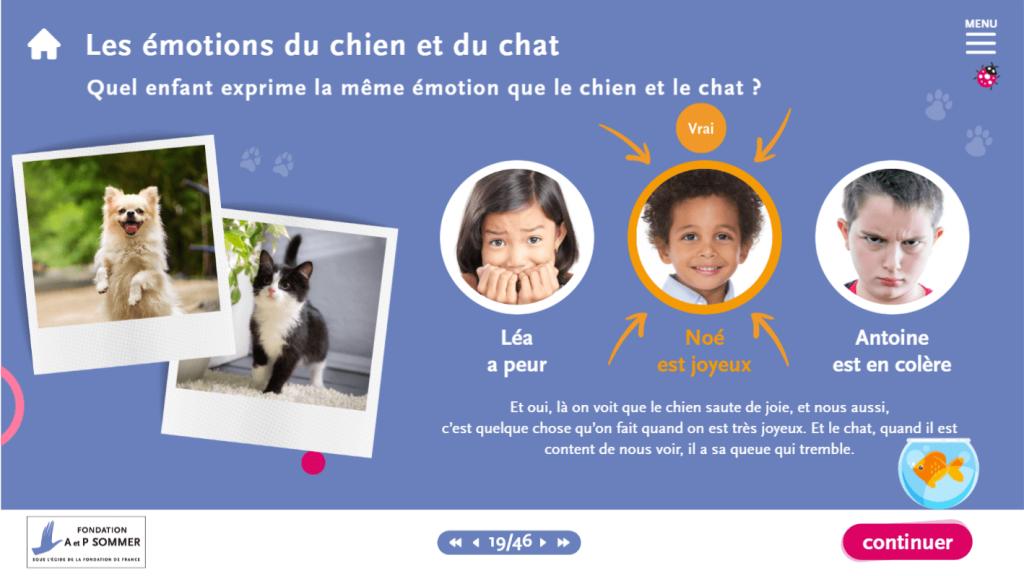 support- les émotions du chien et du chat - La Manane, agence de communication pédagogique